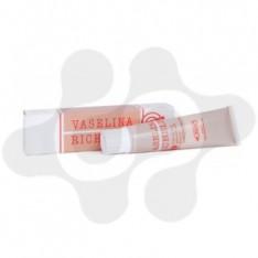 VASELINA RICHELET 30 G